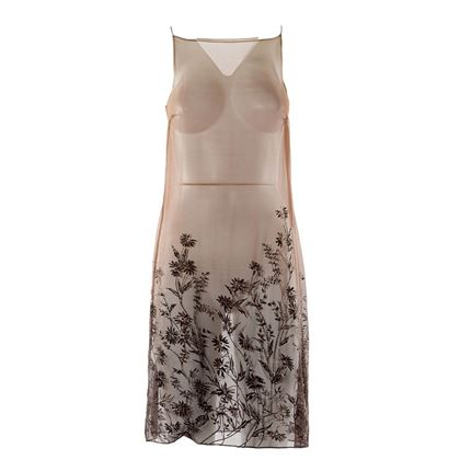 Alberta Ferretti Transparent dress
