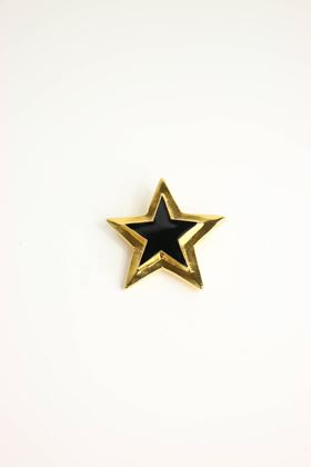 Escada Gold/Black Star Brooch