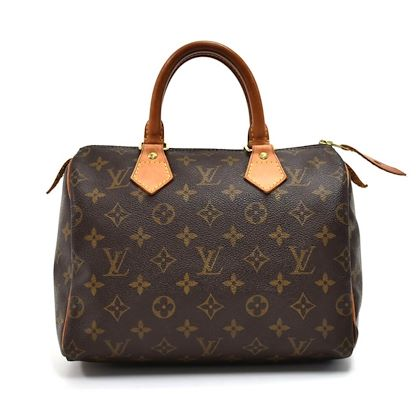 louis-vuitton-speedy-25-monogram-canvas-city-handbag-2