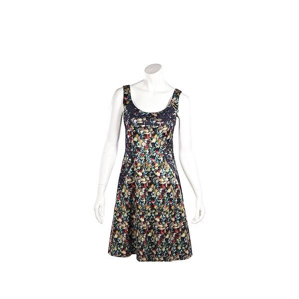 multicolor-erdem-printed-silk-fit-and-flare-dress