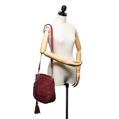 chloe-leather-eden-crossbody-bag-5
